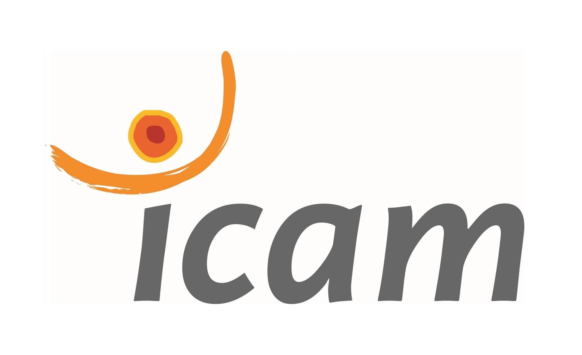 Icam - Grande école d'ingénieurs généraliste à Paris, Lille, Nantes,  Toulouse, Vannes et la Roche-sur-Yon